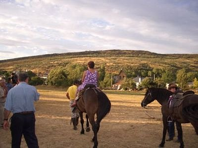 caballos-entregada-por-M-OLiveira.jpg